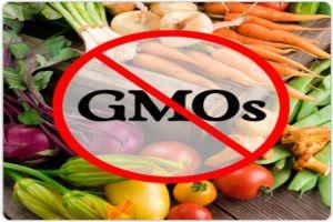 Ban-GMO